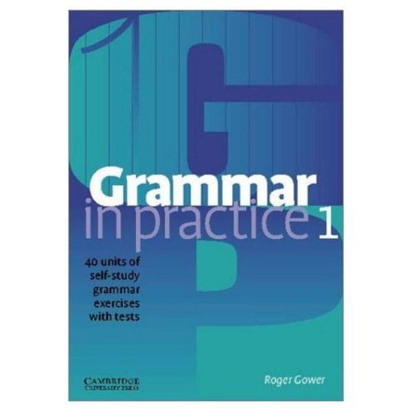 Grammar in Practice 1 Beginner with tests