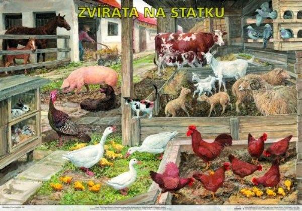 Zvířata na statku (výuková tabule)