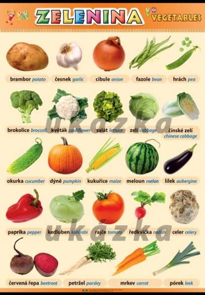 Zelenina - Vegetables (nástěnná tabule 100x70 cm)