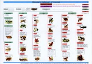 Zoologie - Přehled živé přírody (tabulka)