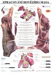 Zpracování hovězího masa - výuková tabule