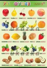 Ovoce - Fruit (nástěnná tabule 100x70 cm)